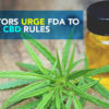 CBD Now |Senators Urge FDA To Relax CBD Rules